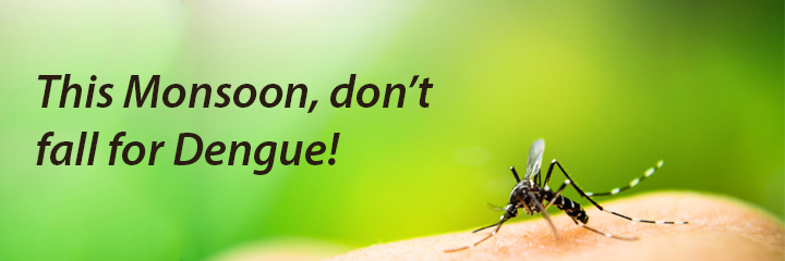 This Monsoon, don't fall for Dengue